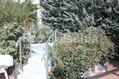 Hotel Royal Terme - La jacuzzi