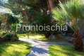 Hotel Terme San Lorenzo - Il giardino