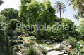 Hotel Terme Tritone - Il giardino