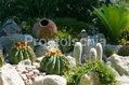 Hotel Terme Tritone - Un angolo di giardino