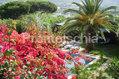 Residence Il Pozzo - La piscina in giardino