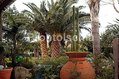 Residence Villa Cristina  - Il giardino