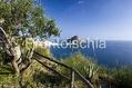 Residence Costa del Capitano - Il panorama