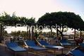Hotel Terme Monte Tabor - Il solarium
