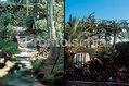 Grand Hotel Terme di Augusto - I sentieri del giardino