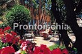 Grand Hotel Terme di Augusto - Il giardino