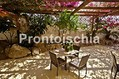 Hotel Citara - Terrazza/giardino bar.