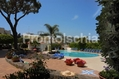Hotel Don Pepe - Il giardino, il solarium attrezzato e la piscina termale