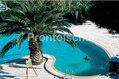Hotel Grazia Terme - La piscina termale scoperta