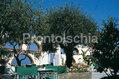 Hotel La Scogliera - Angolo di giardino