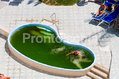 Hotel Nausicaa - La piscina termale