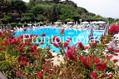 Hotel Oasi Castiglione Parco Termale - Piscina con solarium
