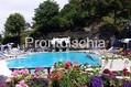 Hotel Oasi Castiglione Parco Termale - La piscina 32° con cascate cervicali