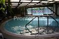 Hotel Parco Maria - Altra visuale della piscina termale interna