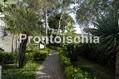 Hotel Parco Villa Teresa - Il parco