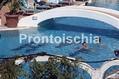 Hotel Parco Villa Teresa - La piscina termale