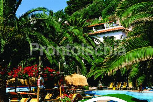 Foto del  Hotel Il Giardino Eden